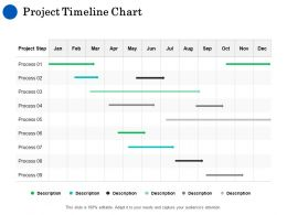 Project Timeline Chart Ppt Powerpoint Presentation Icon Display