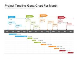 Project Timeline Gantt Chart For Month