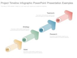 Project Timeline Infographic Powerpoint Presentation Examples