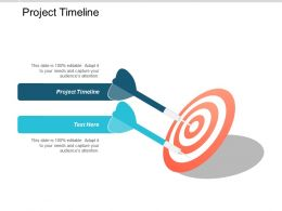 Project Timeline Ppt Powerpoint Presentation Infographic Template Structure Cpb