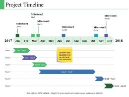 Project Timeline Ppt Powerpoint Presentation Model Summary
