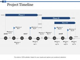 Project Timeline Ppt Powerpoint Presentation Styles Skill