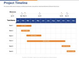 Project Timeline Ppt Powerpoint Presentation Visual Aids Infographics