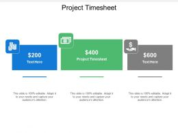 Project Timesheet Ppt Powerpoint Presentation Icon Microsoft Cpb