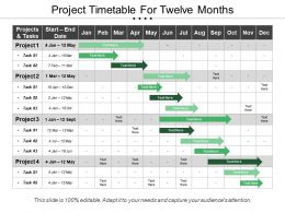 Project Timetable For Twelve Months