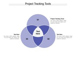 Project Tracking Tools Ppt Powerpoint Presentation Outline Example Topics Cpb