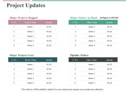 Project Updates Ppt Professional Structure