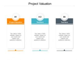 Project Valuation Ppt Powerpoint Presentation Summary Model Cpb