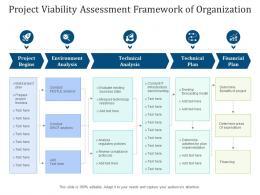 Project Viability Assessment Framework Of Organization