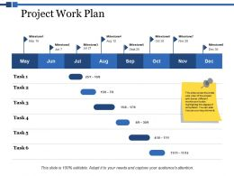 Project Work Plan Ppt Powerpoint Presentation Styles Vector