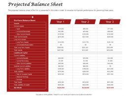 Projected Balance Sheet Assets Ppt Powerpoint Presentation Visual Aids Professional