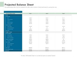 Projected Balance Sheet Capital Ppt Powerpoint Presentation File Show