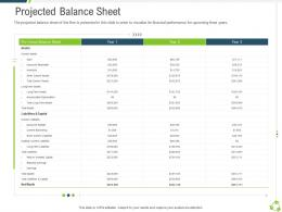 Projected Balance Sheet Company Expansion Through Organic Growth Ppt Portrait