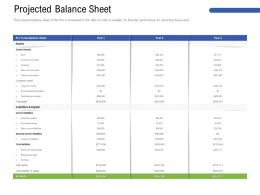 Projected Balance Sheet M3193 Ppt Powerpoint Presentation Infographics Layouts