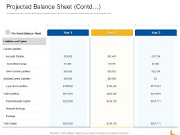 Projected Balance Sheet Payable Ppt Powerpoint Presentation Infographics Guidelines