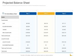 Projected Balance Sheet Ppt Powerpoint Presentation File Gallery