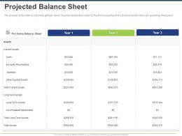Projected Balance Sheet Ppt Powerpoint Presentation Gallery Graphics Example