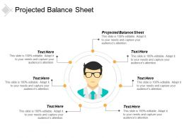 Projected Balance Sheet Ppt Powerpoint Presentation Icon Slides Cpb