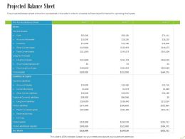 Projected Balance Sheet Ppt Powerpoint Presentation Infographic Template Backgrounds