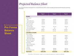 Projected Balance Sheet Ppt Powerpoint Presentation Professional Smartart