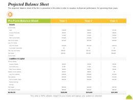 Projected Balance Sheet Subtotal Ppt Powerpoint Presentation Outline Background