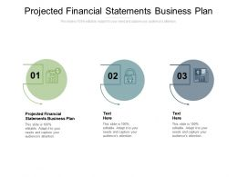Projected Financial Statements Business Plan Ppt Powerpoint Presentation Visual Aids Files Cpb