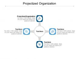 Projectized Organization Ppt Powerpoint Presentation Styles Slideshow Cpb