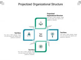 Projectized Organizational Structure Ppt Powerpoint Presentation Outline Tips Cpb