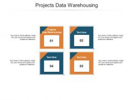 Projects Data Warehousing Ppt Powerpoint Presentation Slides File Formats Cpb