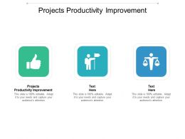 Projects Productivity Improvement Ppt Powerpoint Presentation File Background Cpb