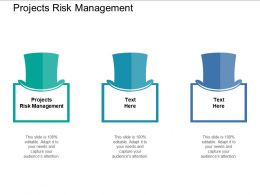 Projects Risk Management Ppt Powerpoint Presentation Slides Template Cpb