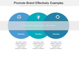 Promote Brand Effectively Examples Ppt Powerpoint Presentation Show Tips Cpb