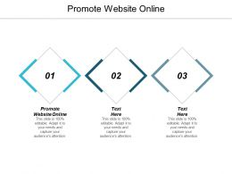 Promote Website Online Ppt Powerpoint Presentation Slides Sample Cpb
