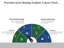 Promotes Good Strategy Analysis Culture Check Strategic Execution