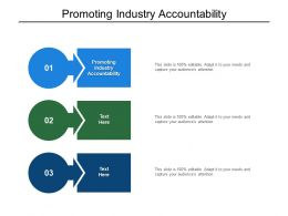 Promoting Industry Accountability Ppt Powerpoint Presentation Model Visuals Cpb