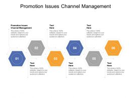 Promotion Issues Channel Management Ppt Powerpoint Presentation Outline Infographics Cpb