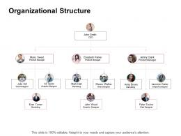 Promotion Organizational Structure Ppt Powerpoint Presentation Professional Slides