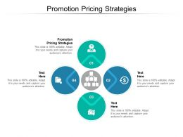 Promotion Pricing Strategies Ppt Powerpoint Presentation Slides Summary Cpb