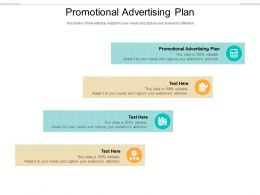 Promotional Advertising Plan Ppt Powerpoint Presentation Professional Example Cpb