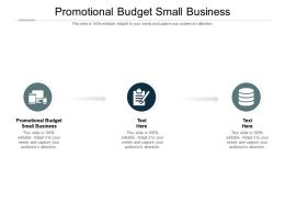 Promotional Budget Small Business Ppt Powerpoint Presentation Styles Master Slide Cpb