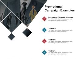 Promotional Campaign Examples Ppt Powerpoint Presentation Visual Aids Gallery Cpb