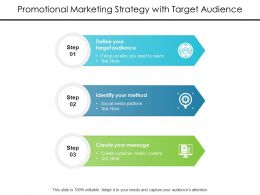 Promotional Marketing Strategy With Target Audience