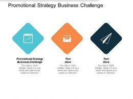 Promotional Strategy Business Challenge Ppt Powerpoint Presentation Inspiration Graphics Cpb