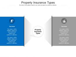 Property Insurance Types Ppt Powerpoint Presentation Summary Layout Cpb
