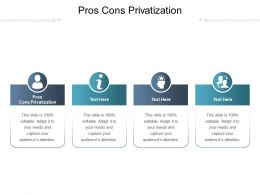 Pros Cons Privatization Ppt Powerpoint Presentation Gallery Design Inspiration Cpb