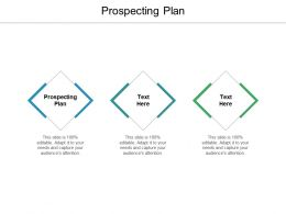 Prospecting Plan Ppt Powerpoint Presentation Professional Graphics Download Cpb