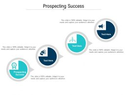 Prospecting Success Ppt Powerpoint Presentation Ideas Visuals Cpb