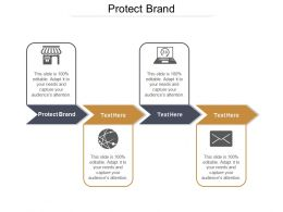 Protect Brand Ppt Powerpoint Presentation Icon Example Topics Cpb