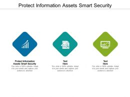 Protect Information Assets Smart Security Ppt Powerpoint Presentation Skills Cpb