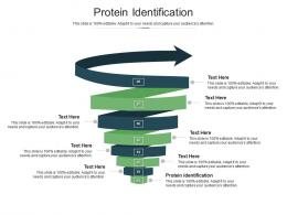 Protein Identification Ppt Powerpoint Presentation Gallery Deck